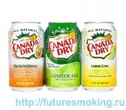 Напиток Canada Dry 355 мл